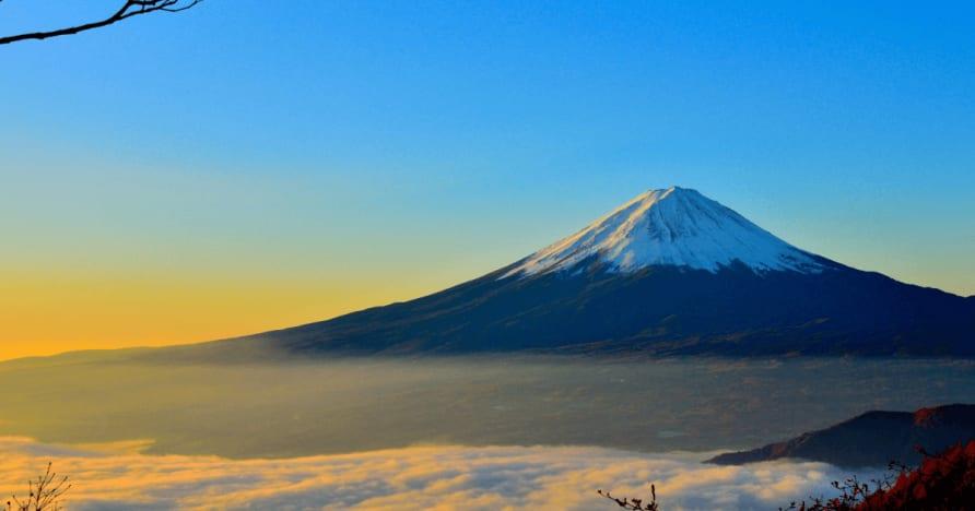 일본은 외국인의 상금에서 원천 징수 세금을 고려합니다