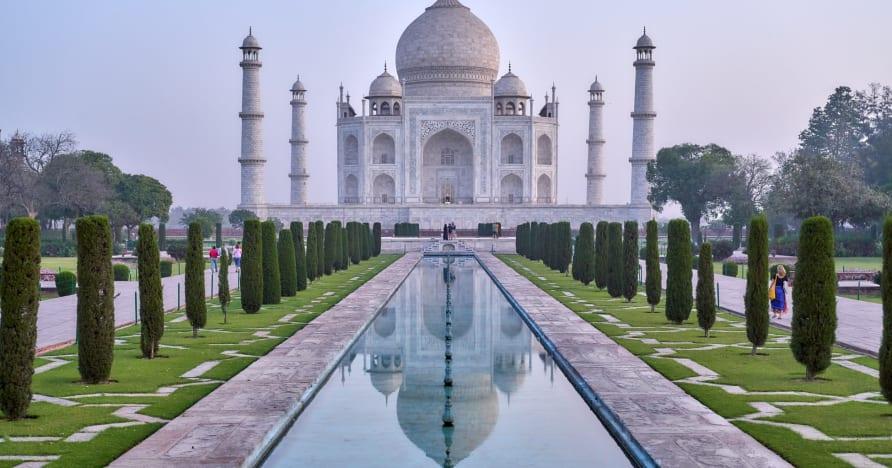 유럽 최고 개는 빠르게 상승하는 인도 온라인 카지노 시장에 광경을 세웠습니다