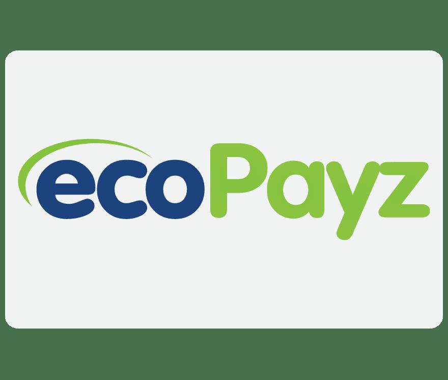 온라인 카지노 EcoPayz
