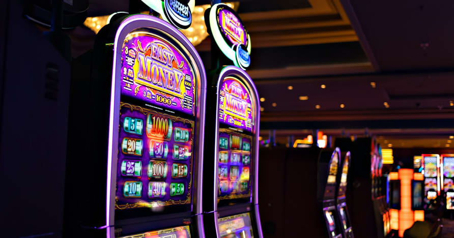 Play'n Go Money Spinning New Slots-Rabbit Hole Riches에 대해 알아야 할 사항